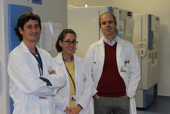 Biobanco La Fe acogerá el primer banco de cerebros de la Comunitat ...